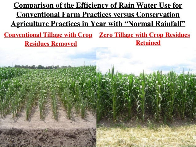 Conventional Farming Practices Use For Conventional Farm