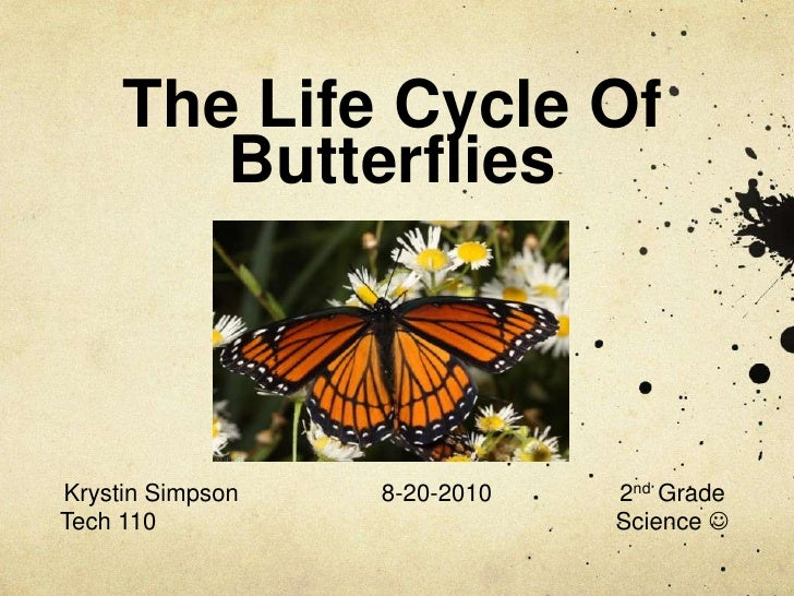 The Life Cycle Of Butterflies<br />Krystin Simpson8-20-20102nd Grade<br />Tech 110 Science <br />