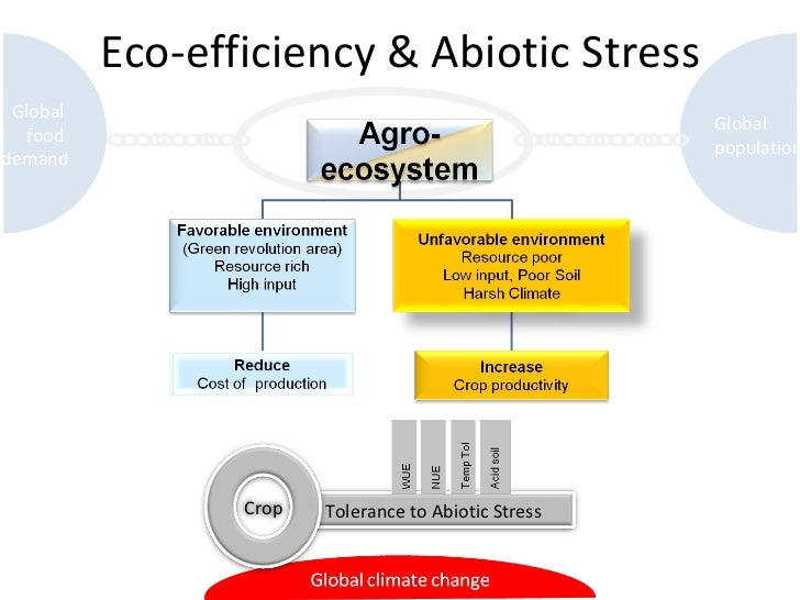 Eco-efficiency & Abiotic Stress Global  food  demand Global  population Tolerance to Abiotic Stress Crop