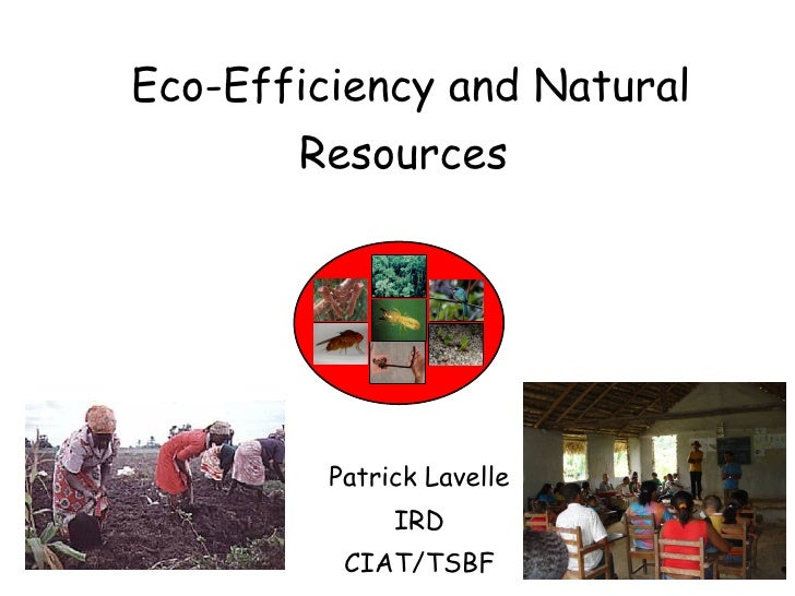 Eco-Efficiency and Natural Resources   Patrick Lavelle IRD CIAT/TSBF