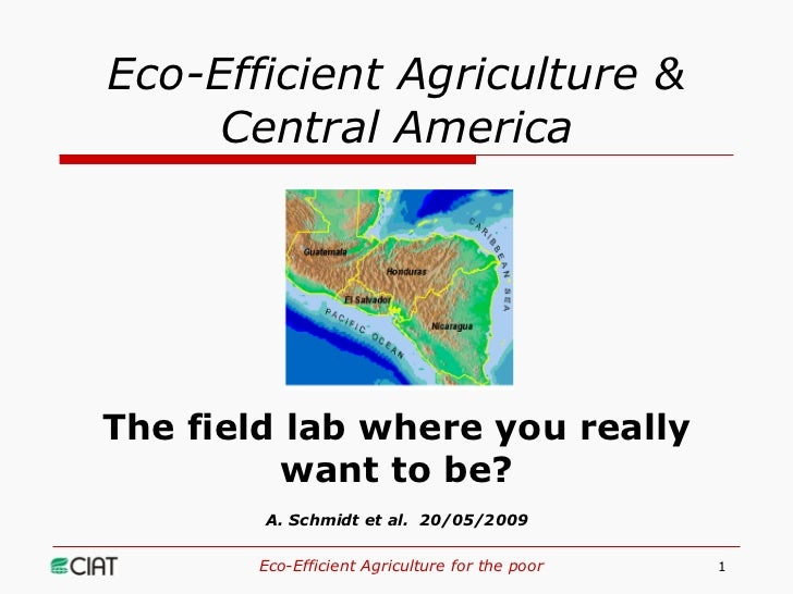 Eco-Efficient Agriculture &      Central America     The field lab where you really          want to be?         A. Schmid...