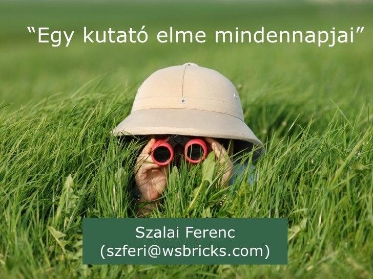 """""""Egy kutató elme mindennapjai""""           Szalai Ferenc      (szferi@wsbricks.com)"""
