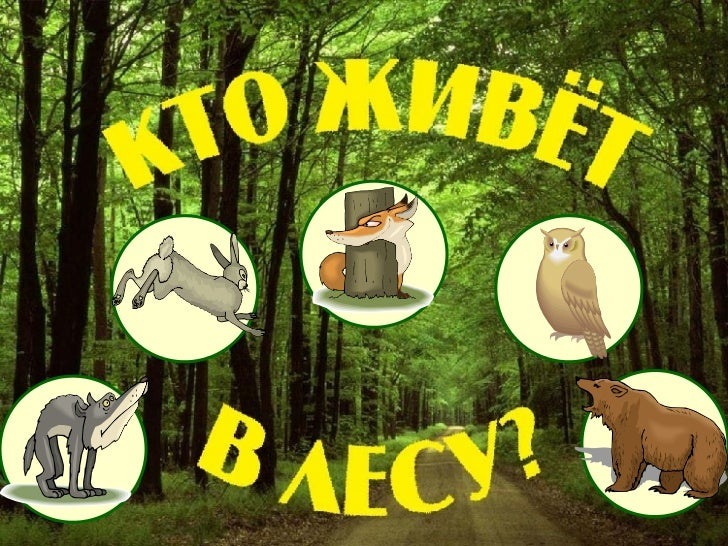 Kto V Lesu Demo