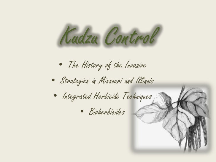 Kudzu Control  • The History of the Invasive• Strategies in Missouri and Illinois • Integrated Herbicide Techniques       ...