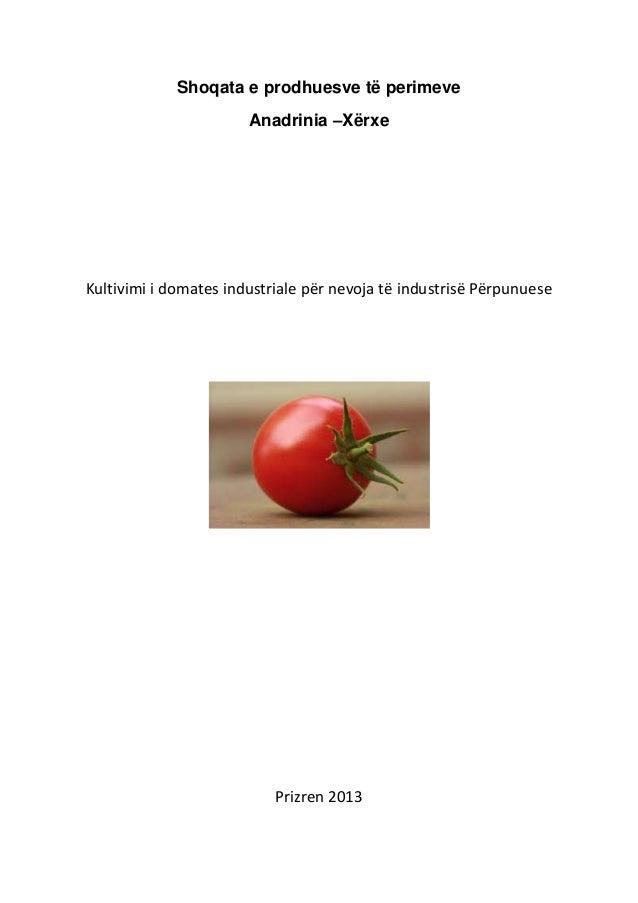 Shoqata e prodhuesve të perimeve                       Anadrinia –XërxeKultivimi i domates industriale për nevoja të indus...