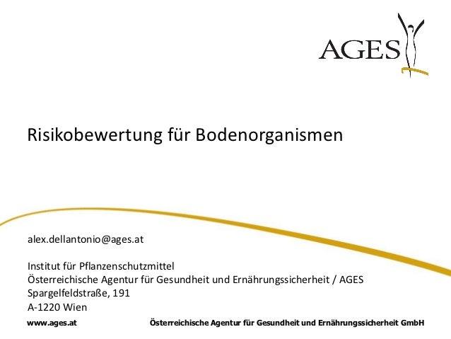 Risikobewertung für Bodenorganismenalex.dellantonio@ages.atInstitut für PflanzenschutzmittelÖsterreichische Agentur für Ge...