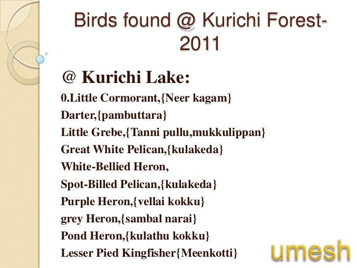 Kurichi forest report(umesh) 2011