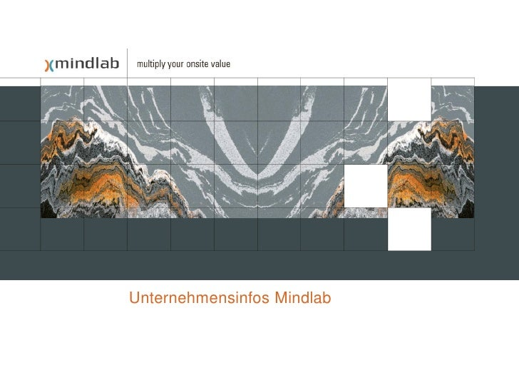 Unternehmensinfos Mindlab