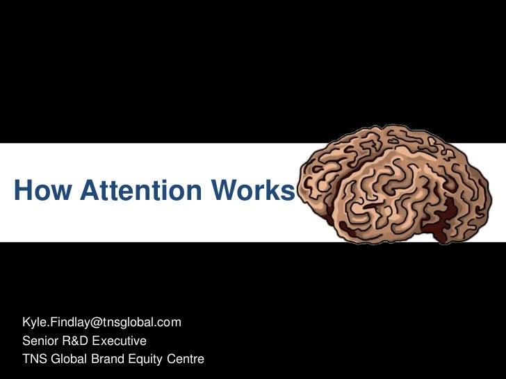 How Attention Works - Kyle Findlay - TNS Global