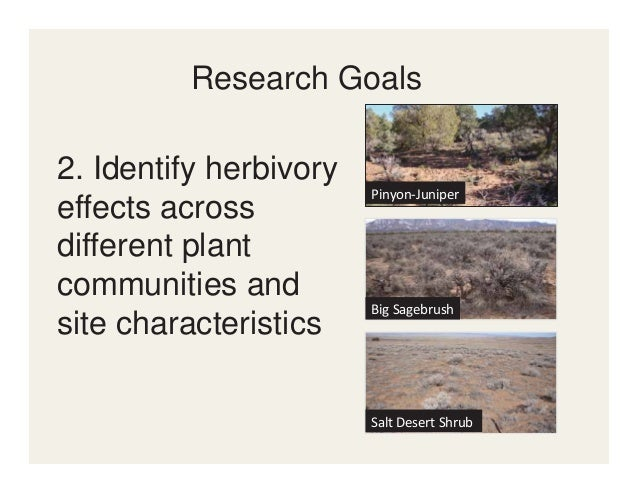 Ungulate Diet Composition Ungulate Habitat