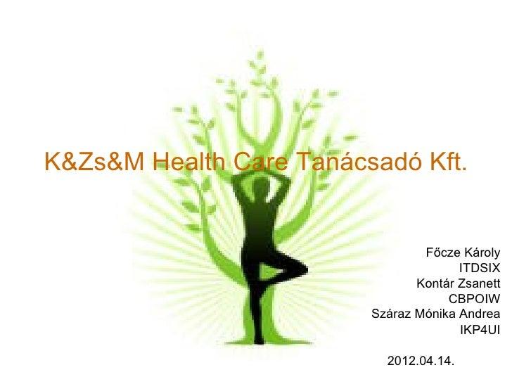 K&Zs&M Health Care Tanácsadó Kft.                                 Főcze Károly                                       ITDSI...