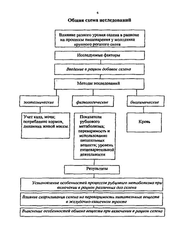 Общая схема исследований