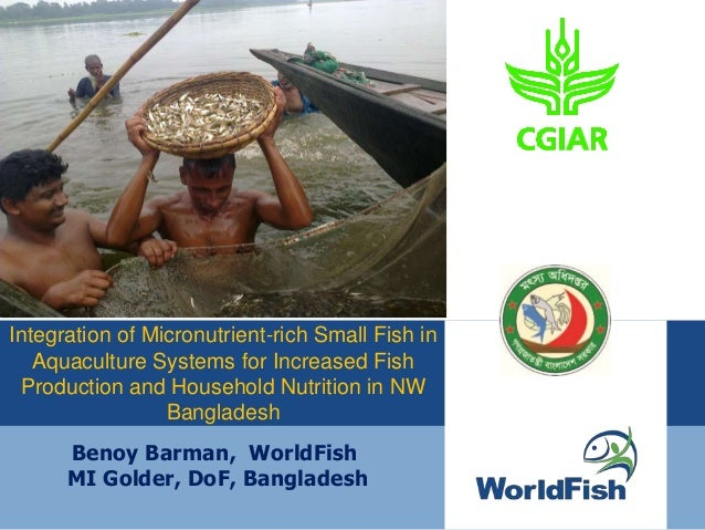 Benoy Barman, WorldFish MI Golder, DoF, Bangladesh Integration of Micronutrient-rich Small Fish in Aquaculture Systems for...