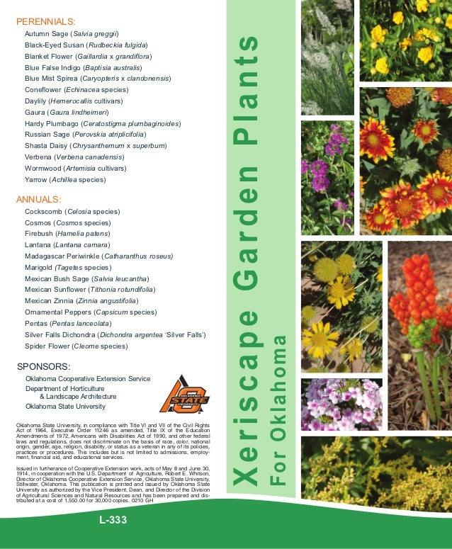 PERENNIALS:   Autumn Sage (Salvia greggii)                                                                                ...