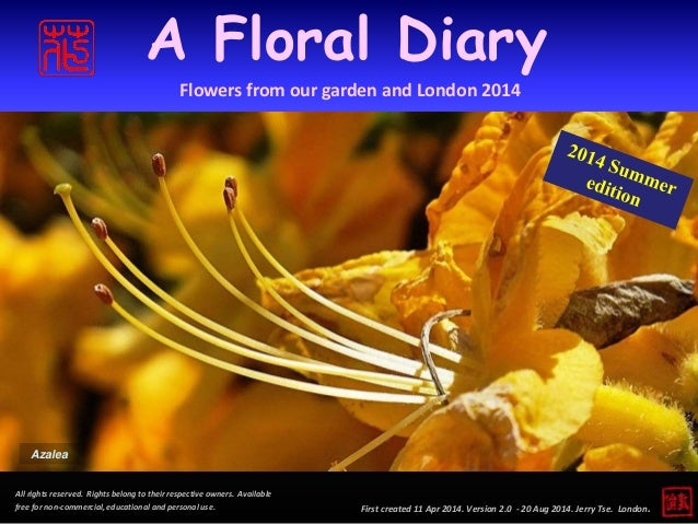 A Floral Diary  Flowers from our garden and London 2014  First created 11 Apr 2014. Version 2.0 - 20 Aug 2014. Jerry Tse. ...