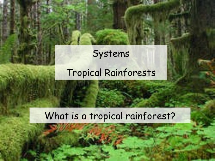 Systems Tropical Rainforests What is a tropical rainforest?