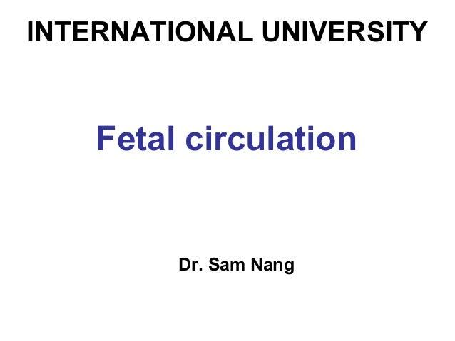 INTERNATIONAL UNIVERSITY Fetal circulation Dr. Sam Nang