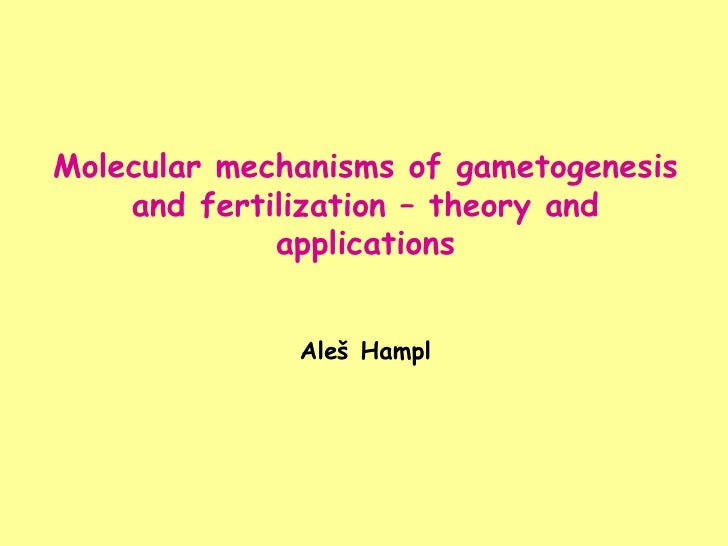 Molecular mechanisms of gametogenesis and fertilization – theory and applications Aleš Hampl