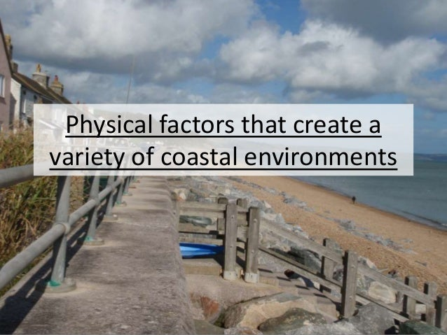 Physical factors that create a variety of coastal environments