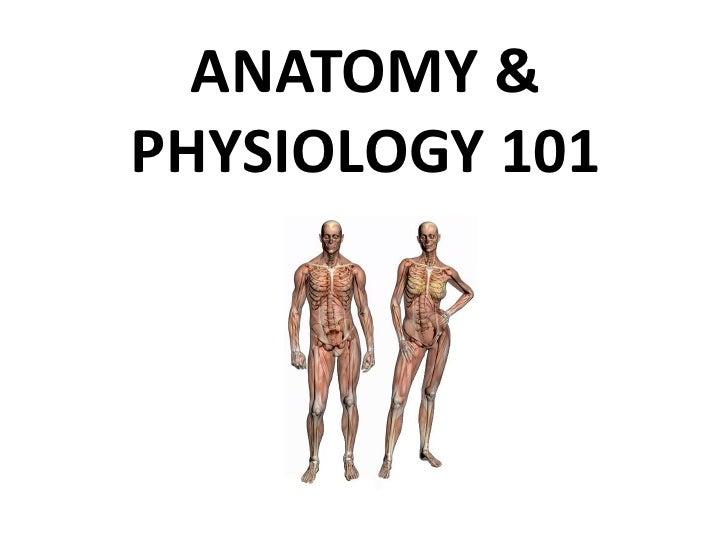 ANATOMY & PHYSIOLOGY 101<br />