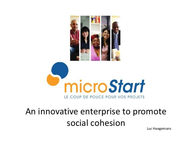 An innovative enterprise to promote          social cohesion     Luc Haegemans