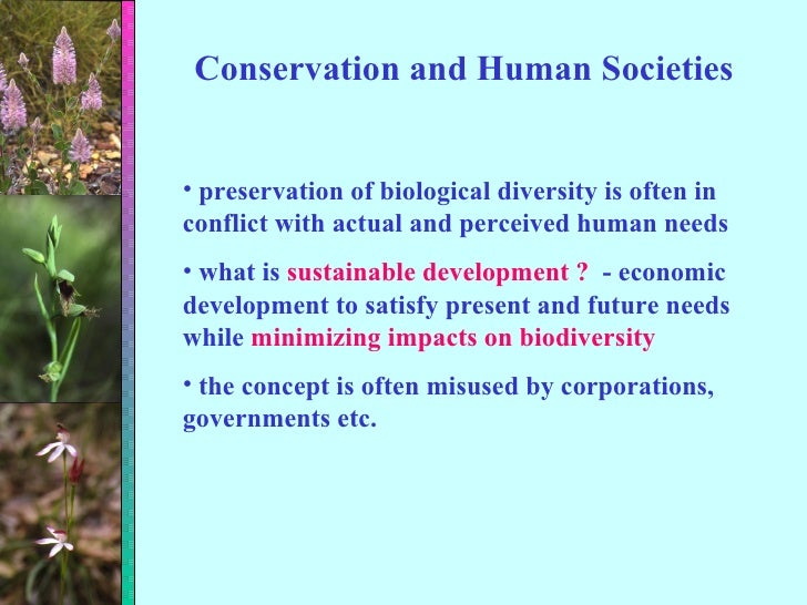 Conservation and Human Societies <ul><li>preservation of biological diversity is often in conflict with actual and perceiv...