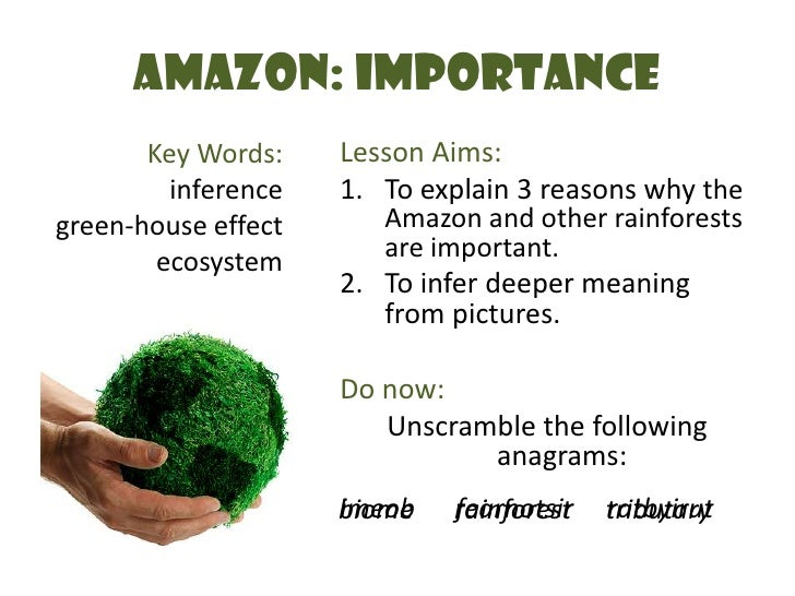 Amazon: Importance<br />Key Words:<br />inference<br />green-house effect<br />ecosystem<br />Lesson Aims:<br />To explain...