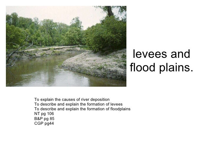 levees and flood plains. To explain the causes of river deposition  To describe and explain the formation of levees To des...
