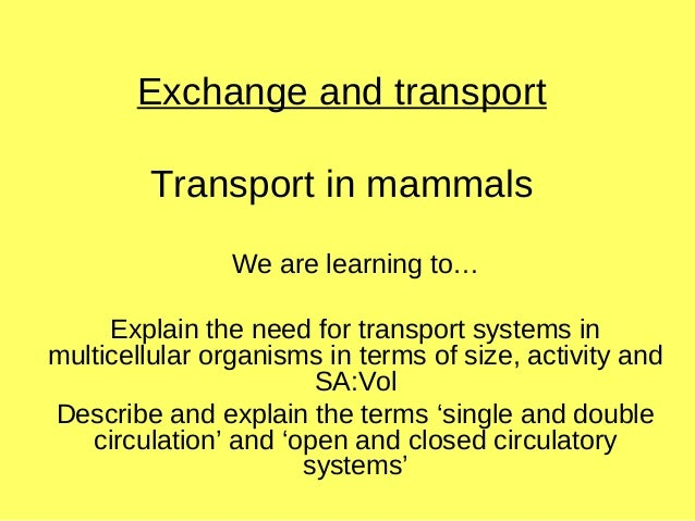 Exchange and transport Transport in mammals We are learning to… Explain the need for transport systems in multicellular or...