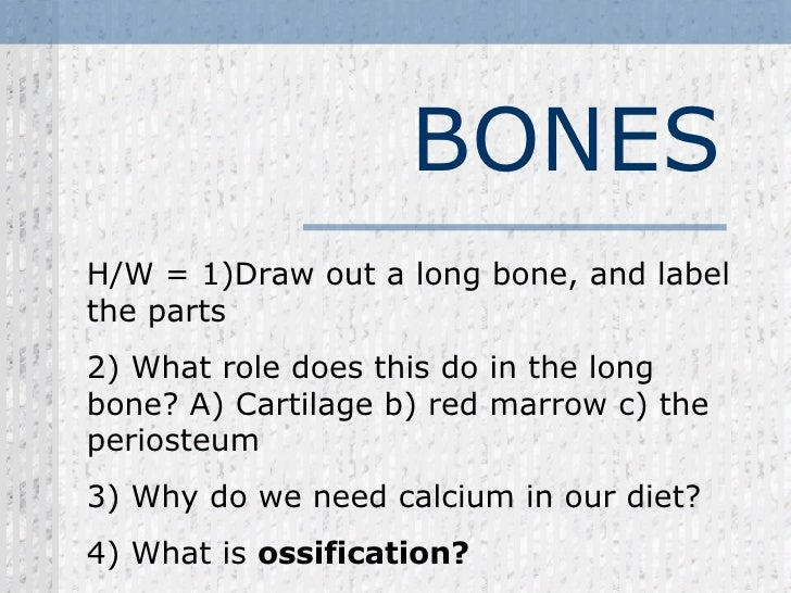 BONES H/W = 1)Draw out a long bone, and label the parts  2) What role does this do in the long bone? A) Cartilage b) red m...