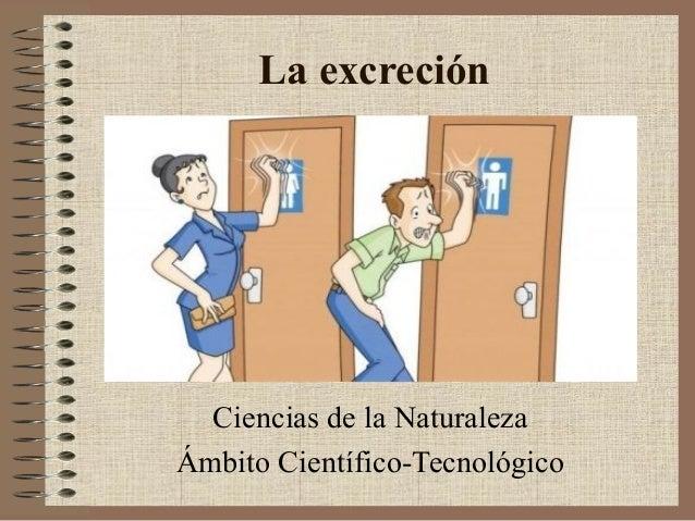 La excreción  Ciencias de la Naturaleza Ámbito Científico-Tecnológico