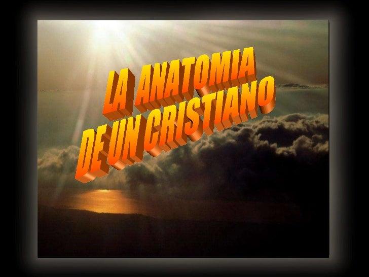 LA  ANATOMIA  DE UN CRISTIANO