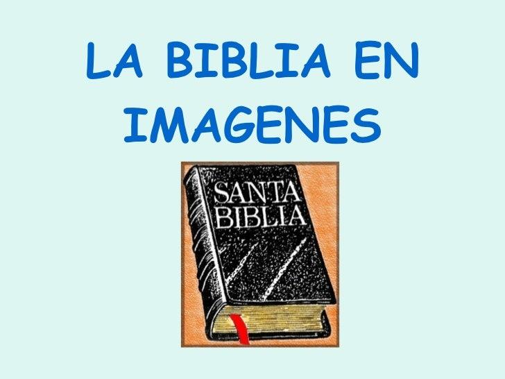 La Biblia En Imagenes