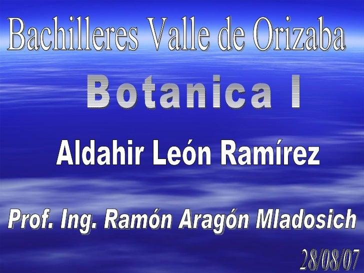 Bachilleres Valle de Orizaba Botanica I Aldahir León Ramírez Prof. Ing. Ramón Aragón Mladosich 28/08/07