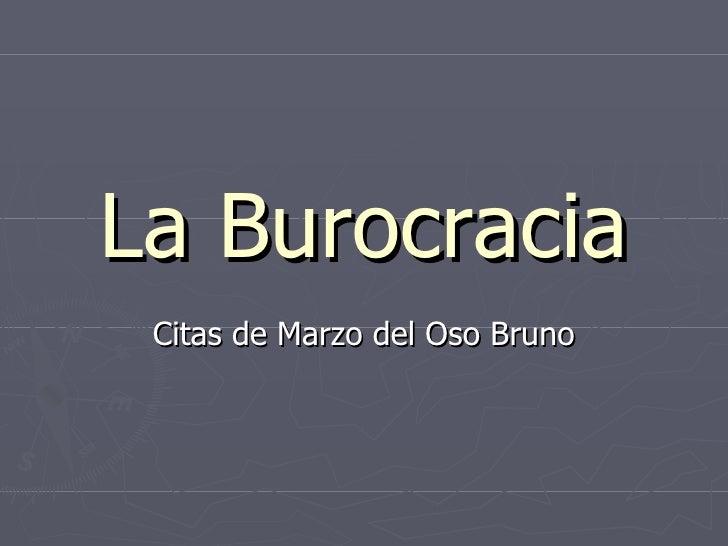 La Burocracia Citas de Marzo del Oso Bruno