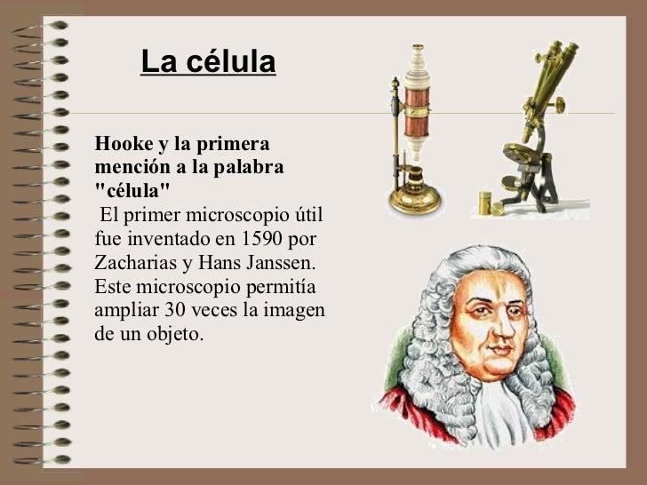 """La célula Hooke y la primera mención a la palabra """"célula""""  El primer microscopio útil fue inventado en 1590 por..."""