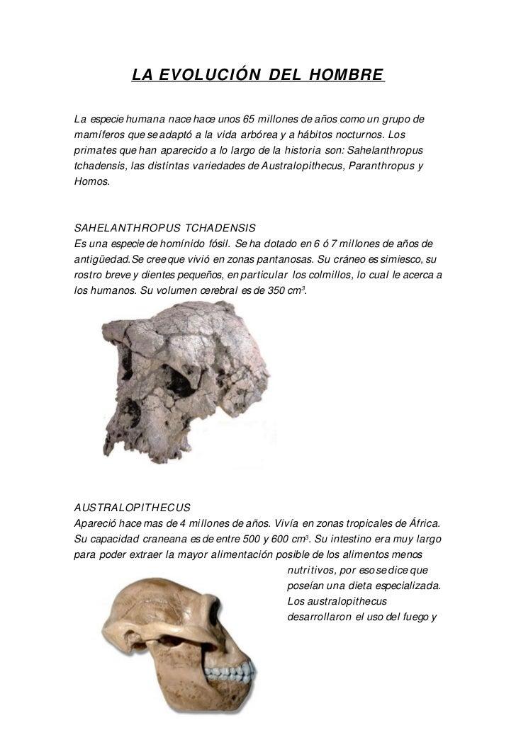 LA EVOLUCIÓN DEL HOMBRE  La especie humana nace hace unos 65 millones de años como un grupo de mamíferos que se adaptó a l...