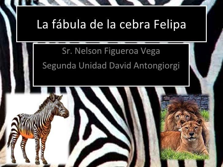 La fábula de la cebra Felipa Sr. Nelson Figueroa Vega Segunda Unidad David Antongiorgi