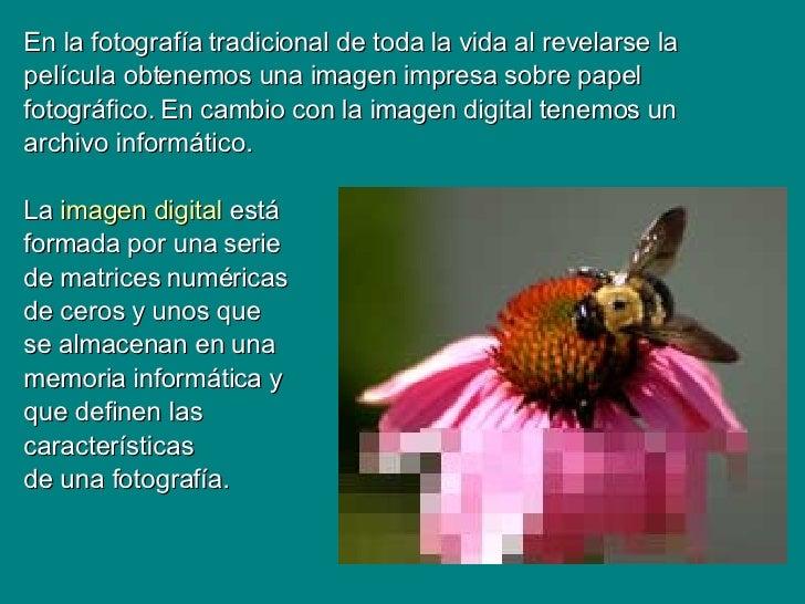 La Imagen Digital[1]