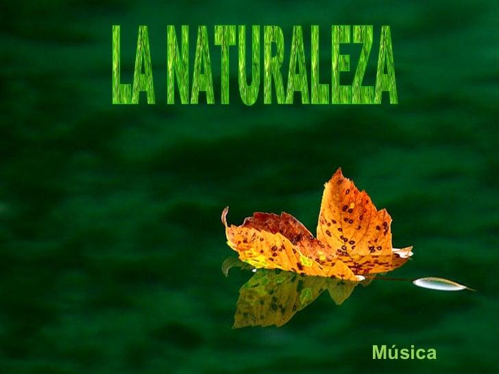LA NATURALEZA  Música