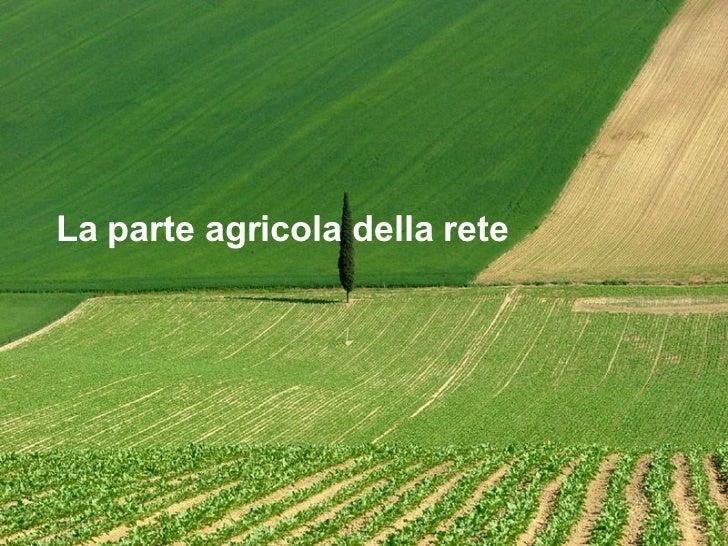 La parte agricola della rete