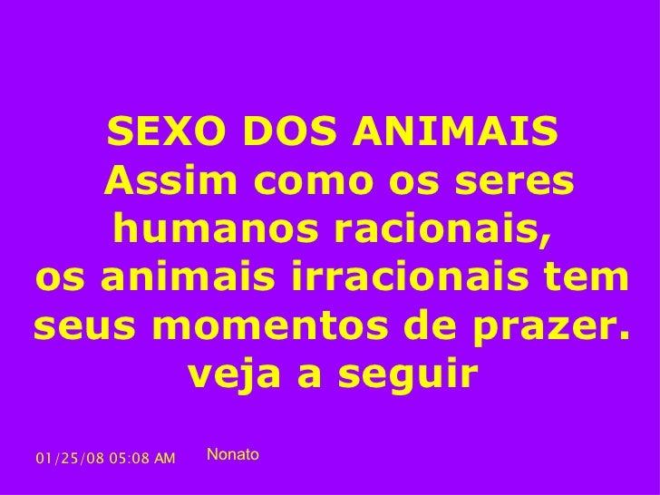 SEXO DOS ANIMAIS  Assim como os seres humanos racionais, os animais irracionais tem seus momentos de prazer.  veja a segui...