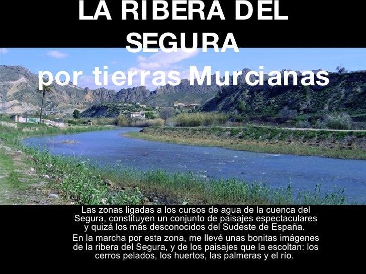 LA RIBERA DEL SEGURA por tierras Murcianas Las zonas ligadas a los cursos de agua de la cuenca del Segura, constituyen un ...
