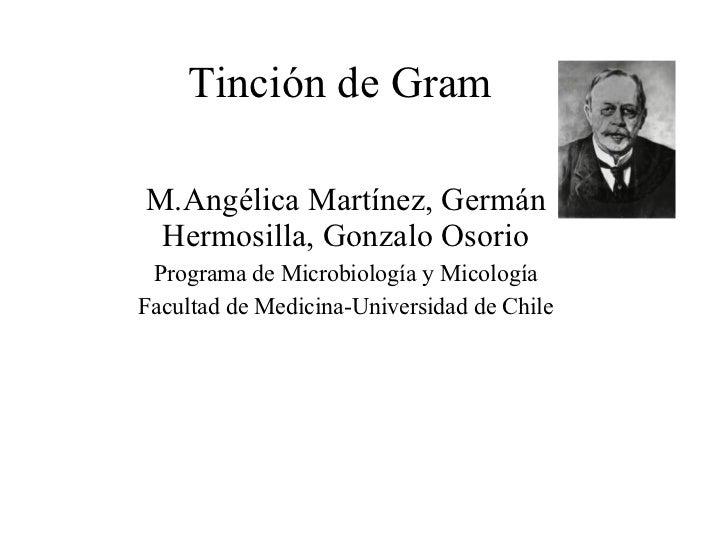 Tinción de Gram M.Angélica Martínez, Germán Hermosilla, Gonzalo Osorio Programa de Microbiología y Micología Facultad de M...