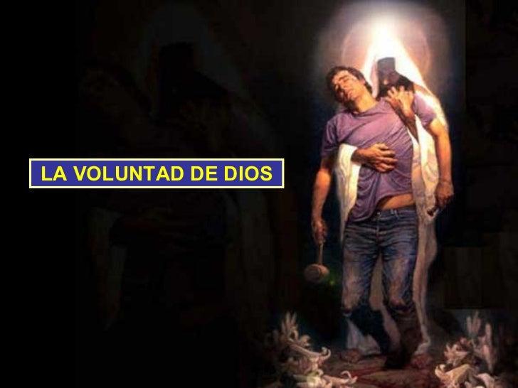 LA VOLUNTAD DE DIOS