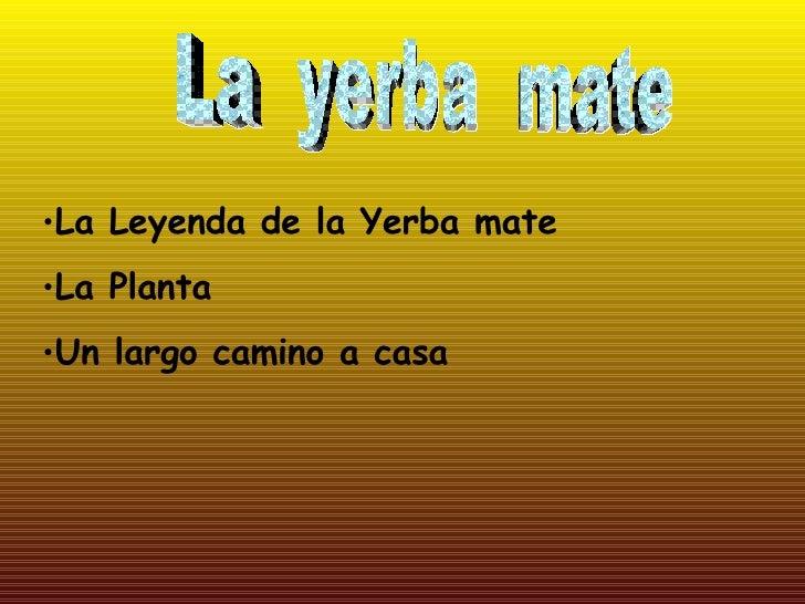La  yerba  mate <ul><li>La Leyenda de la Yerba mate </li></ul><ul><li>La Planta </li></ul><ul><li>Un largo camino a casa <...