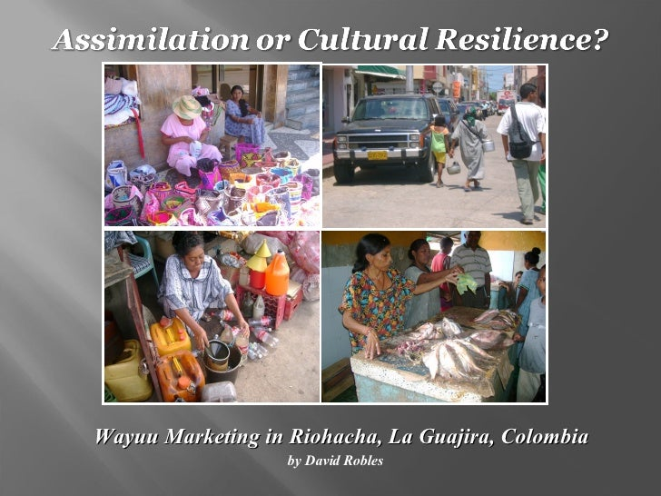 <ul><li>Wayuu Marketing in Riohacha, La Guajira, Colombia </li></ul><ul><li>by David Robles </li></ul>