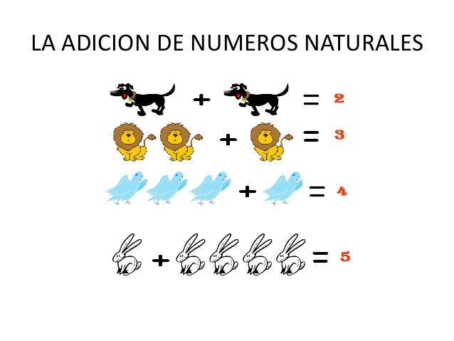 LA ADICION DE NUMEROS NATURALES
