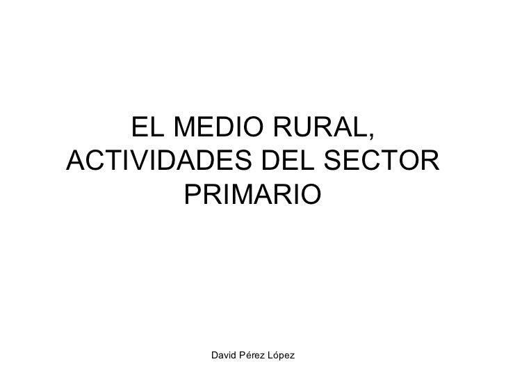 EL MEDIO RURAL, ACTIVIDADES DEL SECTOR PRIMARIO
