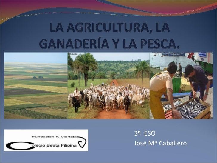3º  ESO Jose Mª Caballero